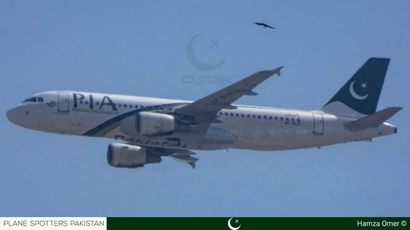 Pakistani International Airlines A320 - zadnji trenutki